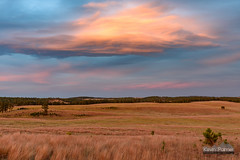 Layered Lenticular (kevin-palmer) Tags: windcave nationalpark windcavenationalpark southdakota hotsprings blackhills october fall autumn evening sunset dusk color colorful vibrant sky clouds gold golden yellow orange grassland nikond750 tamron2470mmf28 lenticular layered pink