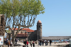 1 mai  Collioure (66) (SMartine .. thanks for 2 Millions Views ) Tags: 66 po collioure nord languedocroussillon pyrnesorientales martinesodaigui