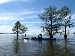 Lowcountry Unfiltered - Lake Marion Ghost Town Paddle - April 2013 (274) (greenkayak73) Tags: friends beagle nature america fun lucy southcarolina adventure kayaking ghosttown mrrussell riverdog lakemarion greenkayak73 randomconnections photopaddling lowcountryunfiltered nitrorev johnatgcc rockscemetery