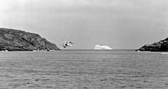 iceberg at The Narrows, St. John's, Newfoundland  1982 (gdraskoy) Tags: canada newfoundland stjohns iceberg nf thenarrows jghegy