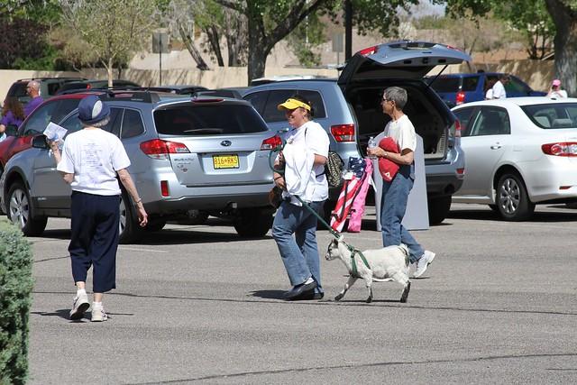 Wasn't just dog's people were walking