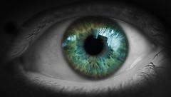 see in color (mezameyo) Tags: blue iris blackandwhite color green eye dark vision   pupil selectivecolor