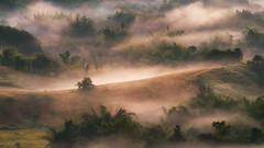 Jurassic Period (asioni) Tags: thailand khaokho phetchabun landmark landscape tree light view amazing mysterious morning sunrise
