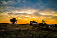 Early walk (2) (Peter Leigh50) Tags: leicestershire farm sunrise countyside field trees sky clouds landscape