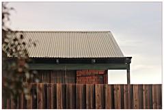 A House Across the Way   I (fotograf1v2) Tags: pakenham victoria australia winter house architecture brickhouse corrugatedironroof palingfence shrub verandah foliage evening latesunlight