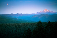 Pacific Northwest (4 of 19).jpg (107MILES) Tags: columbiagorge cascades mthood supermoon northwest moon chili eclipse chaitea larchmt pdx westhills worstday oregon portland rei forest hiking germantown pnw zoo pacificnorthwest larch cycling mountain