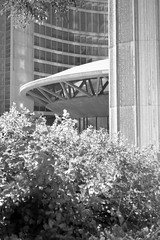 City Hall, Toronto (Richard Wintle) Tags: foma fomapan 200 adonal adox blackandwhite bw monochrome film 135 35mm 38mm f35 canon sureshot sureshotmax toronto ontario canada downtown cityhall