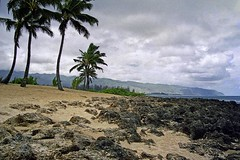 Haleiwa Alii Beach (1) (AntyDiluvian) Tags: hawaii 2001 30thanniversary oahu beach northshore haleiwaalii clouds cloudy palms palmtrees sand lava