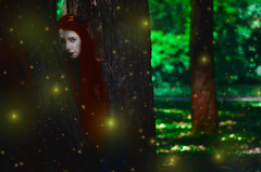#ProjectNeverland: #RedRidingHood (TheJennire) Tags: photography fotografia foto photo colours colores cores light luz fireflies magic dream dreamy ethereal fantasy book fairytale littleredridinghood redridinghood red fashion style makeup hair cabello pelo cabelo young tumblr conceptualphotography projectneverland movie cinema film dark girl woods forest ginger wolf