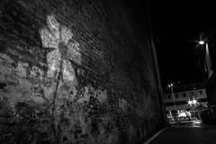 (Giorgini Luca) Tags: bw night black white street graffiti flower fiore disegno muro wall city citt centro noiretblanc