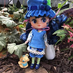 meet Blueberry Muffin (gemini angel's art and dolls) Tags: blueberry blueberrymuffin strawberryshortcake diy middie blythe doll miniature
