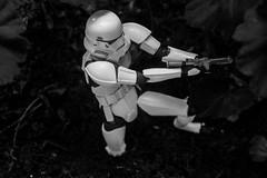 stormtrooper (hasanpilgir) Tags: starwars stormtrooper kaiyado revoltech