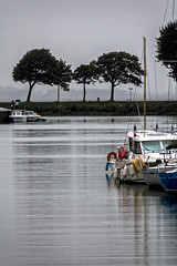 Le calme dans le port (Lucille-bs) Tags: europe france picardie baiedesomme hautsdefrance somme stvalrysursomme port arbre bateau eau calme pluie