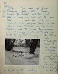 n99_w1150 (BioDivLibrary) Tags: 19191982 australia browngrahama browngrahama19191982 diaries ornithologists travel museumvictoria bhl:page=48115662 dc:identifier=httpbiodiversitylibraryorgpage48115662 grahambrown fielddiary geo:country=australia