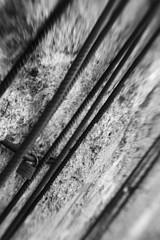 Berliner Mauer (baldenbe (on/off)) Tags: bw blanckandwhite blackandwhite nb noiretblanc monochrome argentique nikon f90x lensbabycomposer lensbaby coolscan ls5000 memorial murdeberlin belinermauer berlinerwall lock cadena