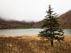 IMG_665220161009 (Zac Li Kao) Tags: japan nikko shirane okushirane nikkoshirane canon g1x powershot mountain hiking climbing hike autumn outdoor