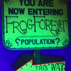 Frog Forest Sign (Blacklight) - Knott's Bear-y Tales (Althegamefreak) Tags: knottsbearytales knottsberryfarm knotts bears beary tales darkride disney darkrides design27 rollycrump roaring20s ride retro original remanents trippy frogs blacklight vintage berry boysenberry