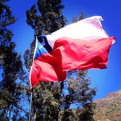 """Bandera chilena, en Contenedor """"comida al aire libre"""", san Alfonso #cajondelmaipo (pablo reynaud) Tags: cajondelmaipo"""