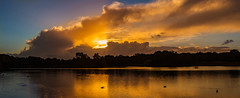 The pond at Richmond Park (RCARCARCA) Tags: cloudscape sunset reflections richmondpark orange light rays trees blue silhouette london 5diii clouds pond 70200l sky canon