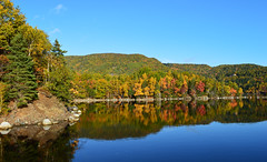 Autumn Reflections (TheNovaScotian1991) Tags: ingonish harbor harbour fallcolors autumn autumnfoliage reflection water bay trees forest woods morning sky appalachianmountains capebretonhighlands nationalpark nikond3200 canada victoriacounty kitlens 1855mm