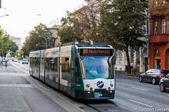 Potsdam-Charlottenhof_Combino-Potsdam410_als_Linie91_19092016 (giesen.torsten) Tags: nikon nikond810 potsdam potsdamcharlottenhof strasenbahn tramway siemens combino