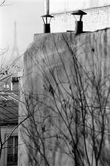 Paris Montmartre tour eiffel dec 1995_20 (patrickdeby) Tags: tour eiffel paris montmartre ombres toits brume