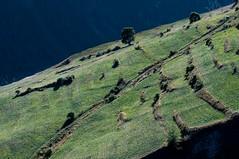 La diagonale du fou (Pierrotg2g) Tags: paysage landscape nature montagne mountain alpes alps nikon d90 tamron 70200