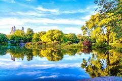 Turtle Pond, Central Park #NewYorkCity (mitzgami) Tags: fall reflection photography turtlepond autumn manhattan centralpark landscape nikonphotography nikon inexplore flickr newyorkcity