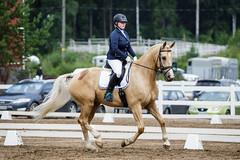 IMG_0776 (aaveennet) Tags: 2016 3taso 3tasokoulu heinkuu heinkuu2016 hevonen kes kilpailut koulu koulukisat kouluratsastus kuopio kuor ratsastus ratsastuskuva sorsasalo