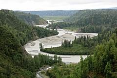 McKinley Explorer ~ River & Spruce - HTMT! (karma (Karen)) Tags: mckinleyexplorer alaska trees spruce rivers glacierwater silt htmt topf25