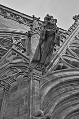 IMG_7537hdr (Fencejo) Tags: bw blackandwhite art hdr carcassonne tamron175028 canon400d