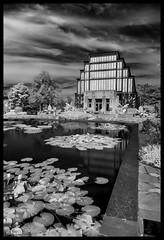 The Jewel Box in Infrared - No. 3 (Nikon66) Tags: jewelbox infrared forestpark stlouis missouri nikon d800