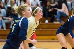 2016-10-14 Trinity VB vs Conn College - 0136 (BantamSports) Tags: camels 2016 bantams college conncollege connecticut d3 fall hartford nescac trinity women ncaa volleyball