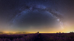 The Arch (Pierre-Henri Felmy) Tags: milkyway arch night nightscape long exposure lavande lightpollution valensole provence france nikond750 afs20mmf18 panorama stitching stars étoiles voielactée brilliant lavender fields