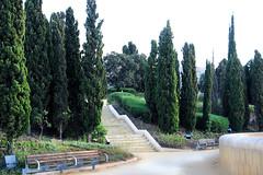 Caminho para o Teatro romano (Vera Schuck Paim) Tags: teatro romano ruinas em cartagena espanha spain runa romanas colunas mrmore rosa jardins caminhos reconstruoes