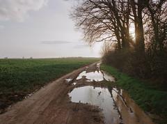 Mud Path, Saclay, April 2016 ( Stanley Bloom) Tags: puddle mud path 6x8 fuji gsw680