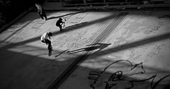 ti brillano gli occhi anche quando lo chiami coglione (_Pek_) Tags: skaters streetphotography pontedellamusica roma skateboard