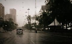 ... (pmenge) Tags: agua chuva carro inverno coqueiros predios duetos g1x
