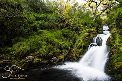 OSullivans Cascade Killarney  | Shane Turner Photography Tralee Co. Kerry (Shane M Turner) Tags: wood ireland summer motion water forest photography waterfall woods nikon photographer shane kerry killarney co turner cascade tomies osullivans