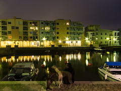 Pikku Huopalahti by night (yet another). (markiisi) Tags: longexposure woman dog reflection collage streetlights powershot blend pocketcamera pikkuhuopalahti makeshifttripod s95 shutterstars