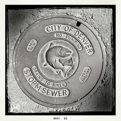 Drains to River (GwenDeanne) Tags: fish art water carved cool nice colorado noflash drain relief cover denverzoo sewer utilities embossed 2013 hipstamatic blackeysbwfilm gsquadlens