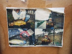 One Pahnd Fish (Bollops) Tags: london abandoned docks se fishing fishermen faded photographs ghostly derelict photosofphotos woolwich metaphotos dockyard pinboard angling photographsofphotographs southeastlondonaquaticcentre