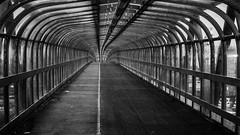 Carter Bridge (FreddieBrown) Tags: bridge blackandwhite covered cycle carter leadinglines shockofthenew