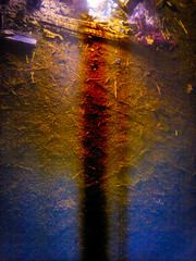 absence (Max.photographies) Tags: light abstract color tree colors fire nokia phone spirit creative cellphone cell trouble elements abstraction element n8 psy absence psychdlique psych