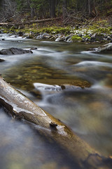 Alexander Creek Oct 30 11_MG_5558 (sloppyshooter) Tags: longexposure log cascade fernie sparwood flowingwater eastkootenays alexandercreek