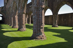 Shadows on the green carpet (The^Bob) Tags: shadow red green scotland ruin sweetheartabbey