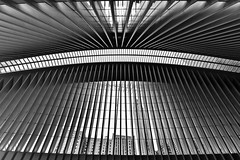 Unveiled (Anna Kwa) Tags: oculus worldtradecentretransportationhub santiagocalatrava architecture interior newyorkcity nyc usa annakwa nikon d750 afszoomnikkor1424mmf28ged my unveiled always travel world lines skyline geometric monochrome sculpture art spanish neofuturistic architect seeing heart throughmylens