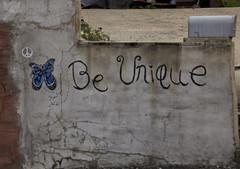 Be Unique (2bmolar) Tags: schuylkillcounty
