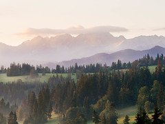 Misty moutains (Radek Fluder) Tags: mist trees cloud zb forest mountains morning tatry