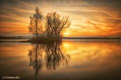 Moody sunset ... Lake Wissel, Niederrhein, Germany (nigel_xf) Tags: niederrhein kalkar kreiskleve sunset sonnenuntergang wissel wisselersee lake see spiegelung reflexion reflection timeexposure langzeitbelichtung nikon d750 nd30 nigel nigelxf vsfototeam insel island